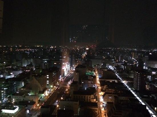 Hotel Nikko Oita Oasis Tower : view from the 21ste floor