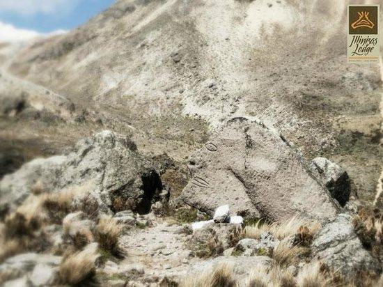 Paisajes, Illinizas Lodge, Machachi, Pichincha, Ecuador