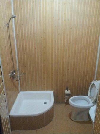 Gelikon Vest Hotel: Ванная комната