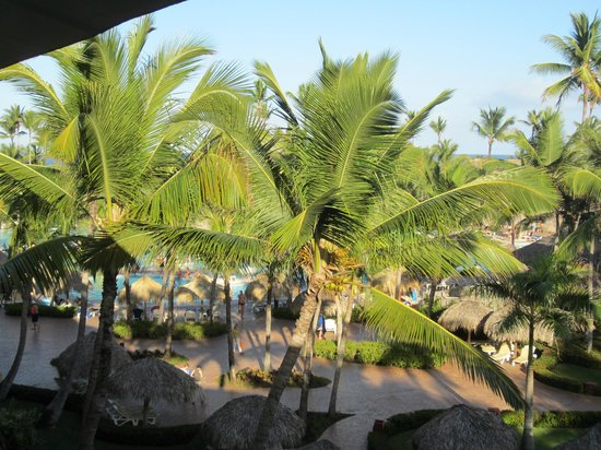 Iberostar Punta Cana : View from Room 5364