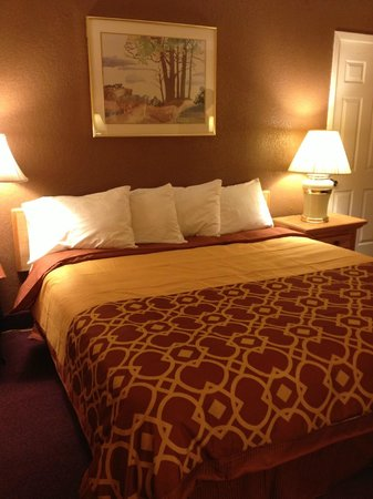 Budget Host Inn Mankato : King