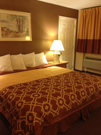 Budget Host Inn Mankato: King