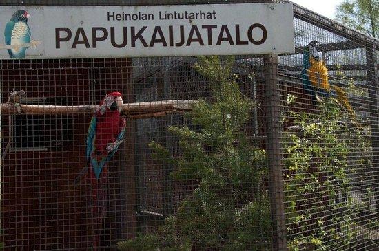 Heinola, Finland: Bird sanctuary