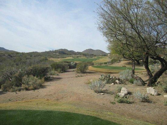 Starr Pass Golf Club: nice view