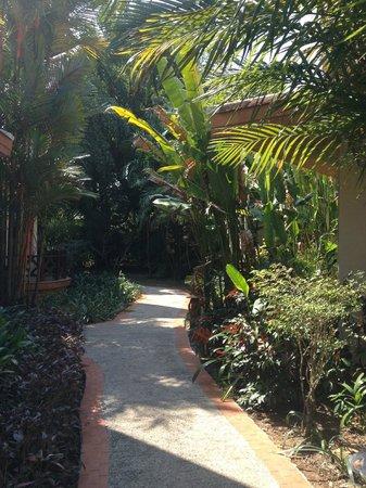 Santhiya Tree Koh Chang Resort: отель