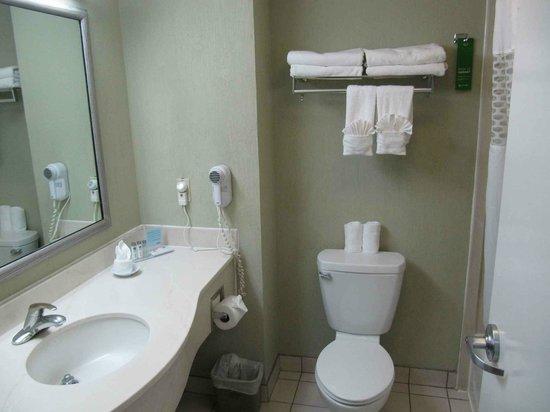 Hampton Inn & Suites by Hilton San Jose Airport: Bathroom