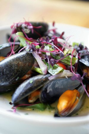 Wingrove House: Fresh Mussels