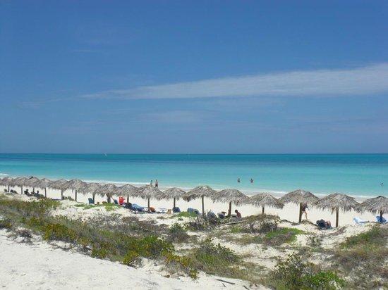Royalton Cayo Santa Maria : Beach View
