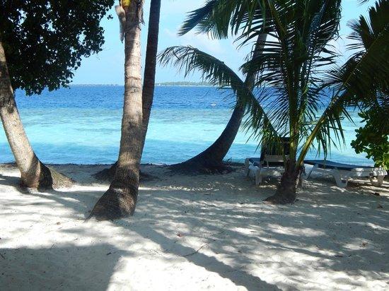Vilamendhoo Island Resort & Spa: view from room