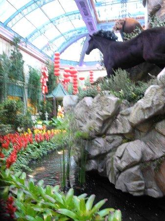 Big Bus Tours Las Vegas: Bellagio Gardens great to see & FREE