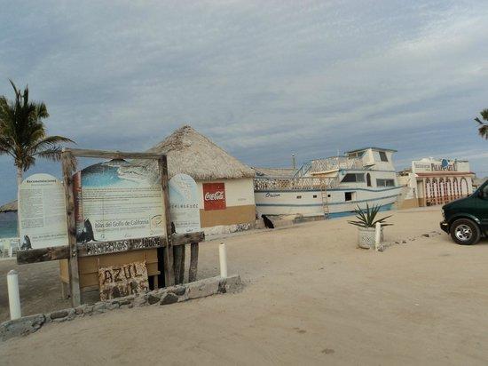 Playa El Tecolote (Tecolote Beach): Cool Stuff