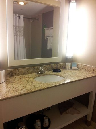 Hampton Inn & Suites Chicago - Downtown: King bed room bathroom