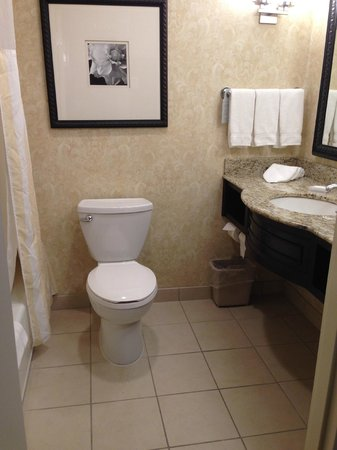 Hilton Garden Inn Lakewood: Bathroom-- clean and spacious!