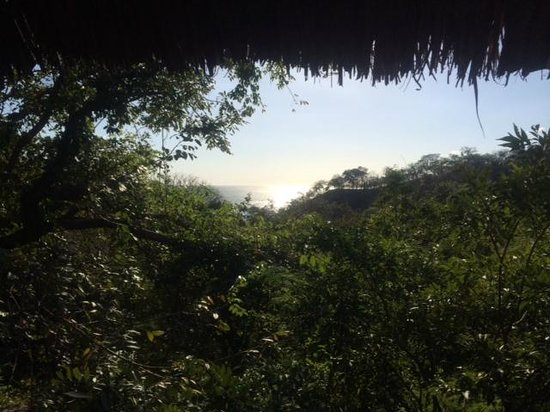 Buena Vista Surf Club: The view from tree-house #2