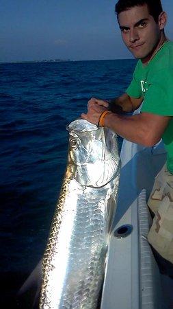 Steady Action Fishing Charters: Tarpon 2