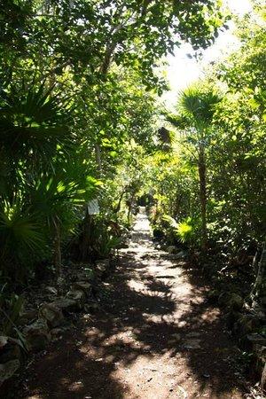 Bel Air Collection Xpu Ha Riviera Maya : chemin