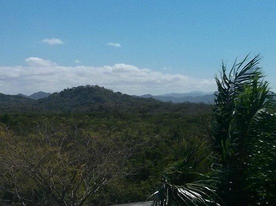 Occidental Tamarindo: Balcony view