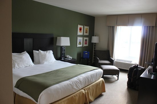 The Holiday Inn Express & Suites Marathon: Chambre King bed