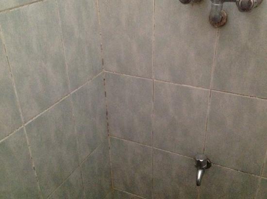 Topaz Beach Hotel: mouldy bathrooms