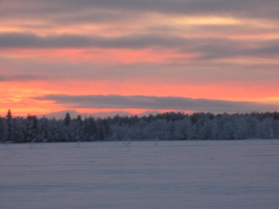 Immelmokit Cabins: a beautiful sunset during our reindeer safari