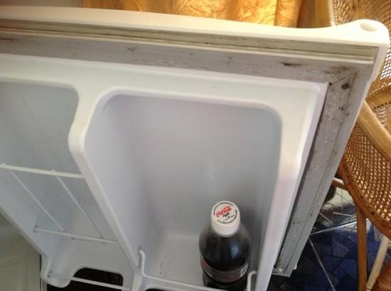 Topaz Beach Hotel: mould in fridge
