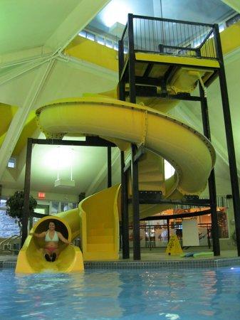 BEST WESTERN Pocaterra Inn: Pocaterra Pool