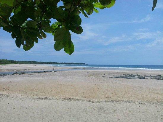Occidental Tamarindo: Playa