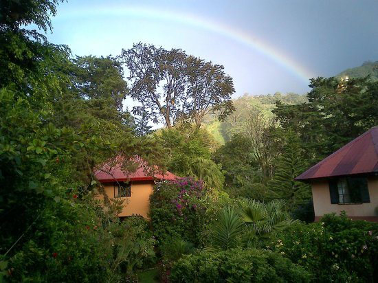 Boquete Garden Inn: A view from the Orchid room.