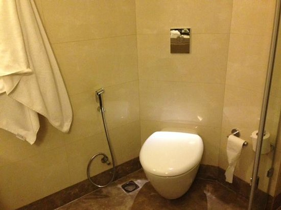 Hilton Garden Inn Gurgaon Baani Square India : Toilet