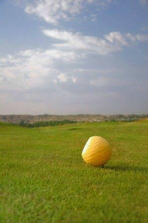 Golf jard n de aranjuez aktuelle 2018 lohnt es sich for Golf jardin de aranjuez