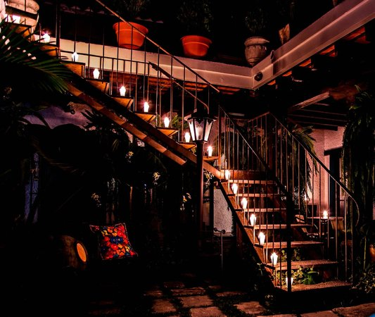 Cacao Boutique Hotel: Garden