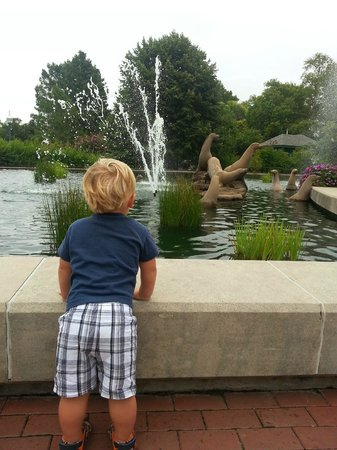 St. Louis Zoo: My son at the entrance fountains