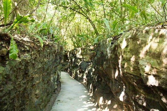 Xcaret Eco Theme Park : chemin