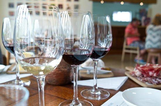 Spier Wine Farm : Wine tasting with food pairing.