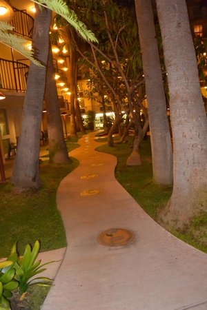 Los Angeles Airport Marriott: The garden at evening