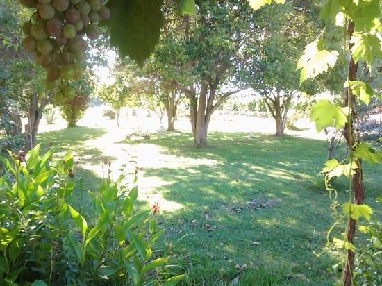 Posada Cavieres Wine Farm: Posada Cavieres Jan 2014