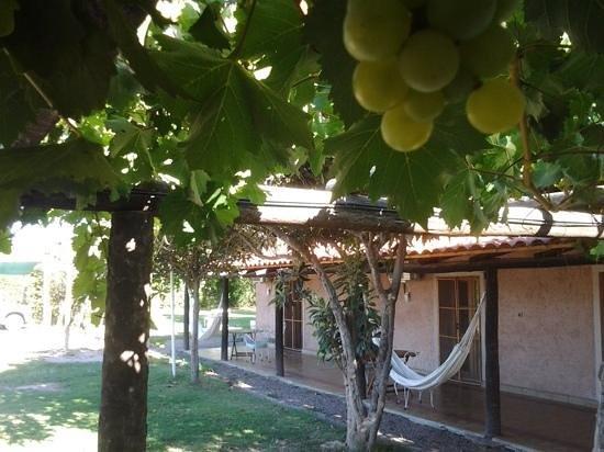 Posada Cavieres Wine Farm: Posada Cavieres Jan2014