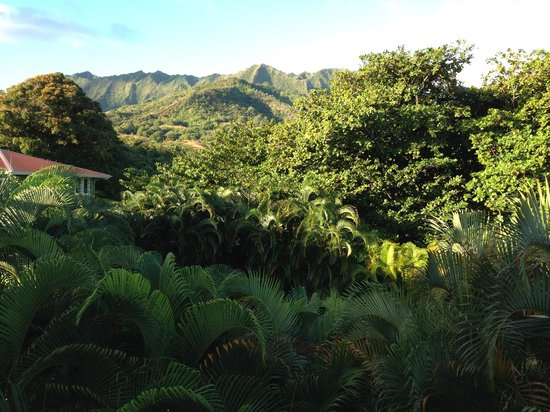 Hale Ho'o Maha Bed & Breakfast: View from the Mango room