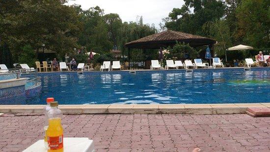 Regina Hotel Sunny Beach: Pool
