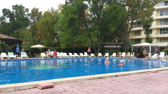 Regina Hotel Sunny Beach : Pool