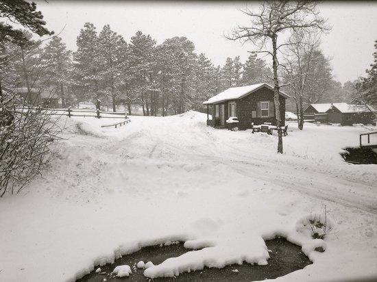 Triple R Cottages照片