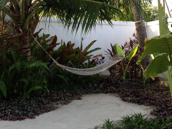 Velassaru Maldives: Front Garden