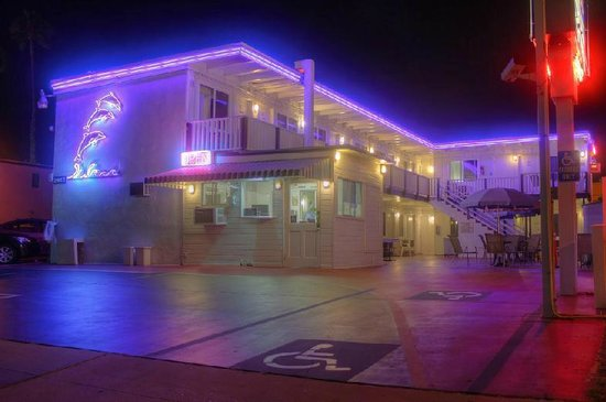 Dolphin Motel : motel