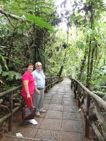 La Paz Waterfall Gardens: Los senderos que conducen a las Cataratas
