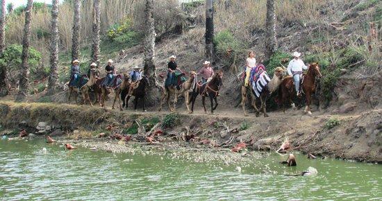 Rosarito Ocean Sports : Canyon de Rosarito