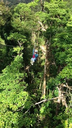 El Establo: Canopy tour in the property!