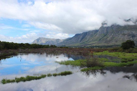 MOSAIC Lagoon Lodge: Beautiful mountains
