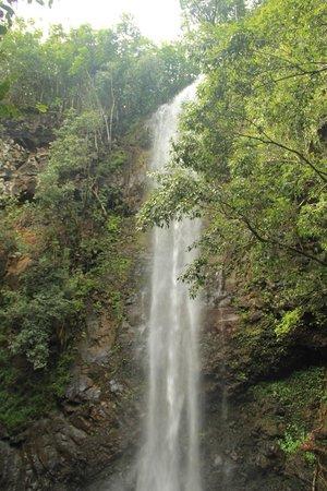Kayak Wailua : Secret Falls