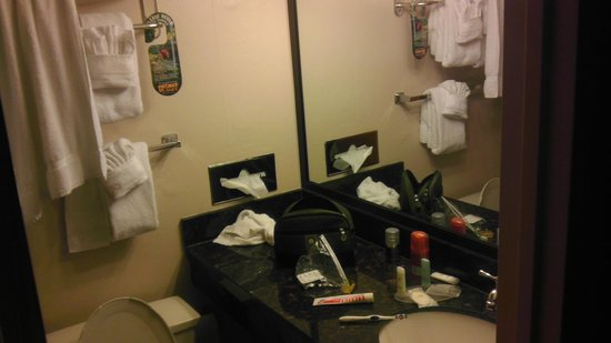 Comfort Inn University Center: Bathroom