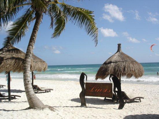 La Zebra Colibri Boutique Hotel: the wonderful beach